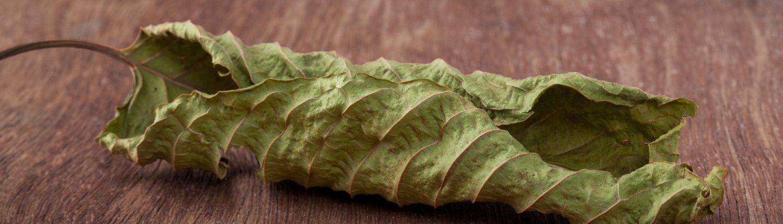 (Dosage) Dried Kratom leaf